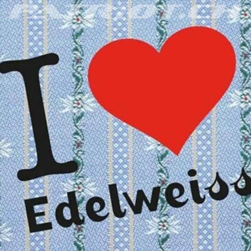 #edelweiss #edelweisshemd